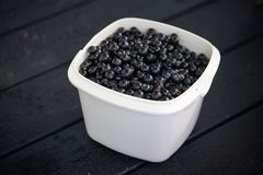 Blackcurrants in a bowl Royalty Free Stock Photos