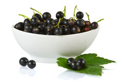 Blackcurrants in ceramic bowl Royalty Free Stock Image
