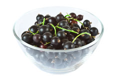 Blackcurrants in glass bowl Stock Photos