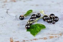 Blackcurrants met bladeren op de blauwe bank Royalty-vrije Stock Foto