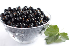 Blackcurrants in a transparent bowl. Fragrant berries Royalty Free Stock Image