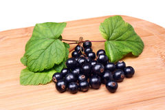 Blackcurrants Stock Photo