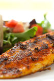 Blackened fillet of Tilapia salad Royalty Free Stock Images