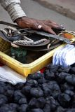 Blackened hands of a selling roasted chestnuts on a street in Delhi royalty free stock photos
