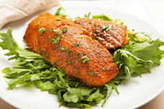 Blackened Salmon on Lettuce Royalty Free Stock Photography