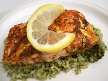 Blackened Salmon and Rice stock photography