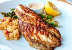 Blackened Tilapia with Couscous Royalty Free Stock Photo