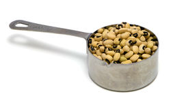 Blackeye Peas in Measuring Cup Royalty Free Stock Image