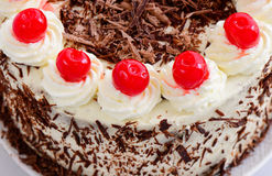 Blackforest cake Royalty Free Stock Images