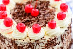 Blackforest gateau cake. High angle closeup view of a delicious fresh blackforest gateau decorated with the traditional whipped butter cream, chocolate flakes royalty free stock photo