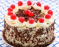 Blackforest gateau decorated with the traditional cream, chocolate flakes and cherries. High angle closeup view of a delicious fresh blackforest gateau decorated royalty free stock image