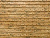 Blackground rosso di struttura del muro di mattoni fotografia stock