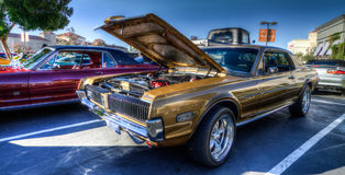 Blackhawk Cars and Coffee Danville Ca Royalty Free Stock Photo