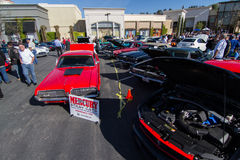 Blackhawk coffee and cars April 6th 014 Royalty Free Stock Photography