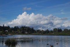 Blackmans Lake Stock Photo