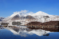 Blackmount in Winter. A perfect winters day with the Black Mount mountains reflected in the still water of lochan na h'achlaise on Rannoch Moor Stock Photography