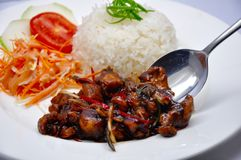 Blackpaper chicken served with rice stock photo