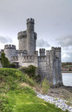 Blackrock Castle in Cork Royalty Free Stock Images
