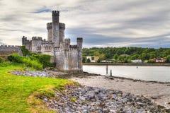 blackrock observarory城堡的黄柏 免版税库存图片