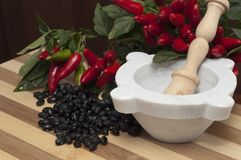 Blacks beans and chilli Royalty Free Stock Image