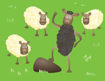 blacksheep Stock Illustrationer