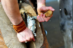 Blacksmith clearing hoof of a horse royalty free stock photos