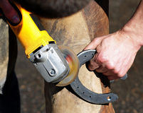Blacksmith grinding a horseshoe. The Blacksmith grinding a horseshoe Royalty Free Stock Images