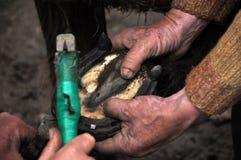 Blacksmith kuje konia Obrazy Royalty Free