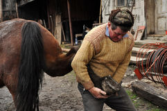 Blacksmith shoeing a horse. LUPENI - APRIL 19: Unidentified blacksmith, farrier shoeing a horse. Such type of smithery techniques are very rare in Romania. On Stock Photography