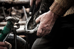 Blacksmith shoeing a horse. LUPENI - APRIL 19: Unidentified blacksmith, farrier shoeing a horse. Such type of smithery techniques are very rare in Romania. On Stock Photo