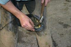 Blacksmith at work. Blacksmith tapping on horse shoe Stock Photography