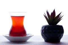 Blackt tea Stock Images