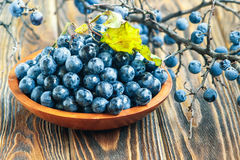 Blackthorn. Autumn still life with blackthorn branches, leaves and fresh juicy ripe berries in a bowl on a wooden table. (Prunus spinosa or sloe Stock Photo