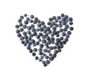 Blackthorn berries Royalty Free Stock Photos