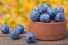 Blackthorn berries in a wooden bowl on table with blurred background Royalty Free Stock Images