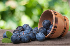 Blackthorn berries in a wooden bowl on table with sacking and blurred background Stock Photography