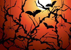 Blackthorn branches, bats and spiders Stock Images