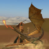 Blackthorn Warrior Kills Dragon. A warrior woman raises her sword to kill a fire breathing dragon Stock Photography