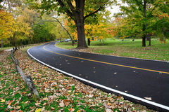 Blacktop Road Stock Image