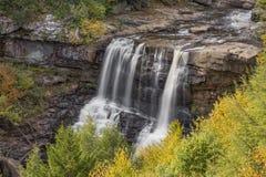 Blackwater падает осень стоковая фотография