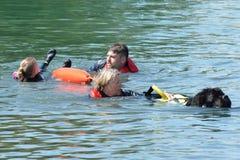 Blackwater Country Fare MALDON ESSEX UK 22 June 2014:Dog in Mock Rescue Stock Photo
