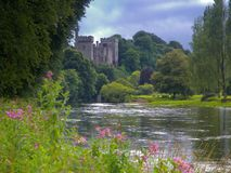 Blackwater do rio Fotografia de Stock Royalty Free