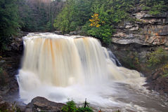 Free Blackwater Falls Stock Photos - 1545123