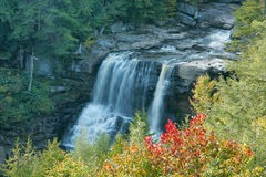 Blackwater Falls. WV in the fall with autumn foliage. River flows into waterfall and falls 56 feet to the canyon Royalty Free Stock Photography