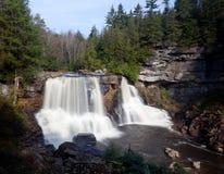 Free Blackwater Falls In Autumn Royalty Free Stock Photo - 21688095