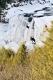 Blackwater Falls, WV, in Winter Vertical Royalty Free Stock Photography