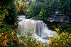 Blackwater-Fälle, West Virginia, im Herbst Stockbilder