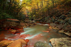 Blackwater river in forest. Scenic view of blackwater river in scenic Autumnal forest with slow motion blur effect Stock Photography