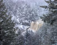 Blackwater State Park Falls in Snow Stock Photography