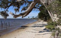 Blackwaterfjärd - Pensacola royaltyfria bilder